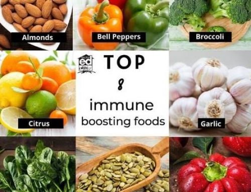 These 8 Foods That Can Support Your Immunity