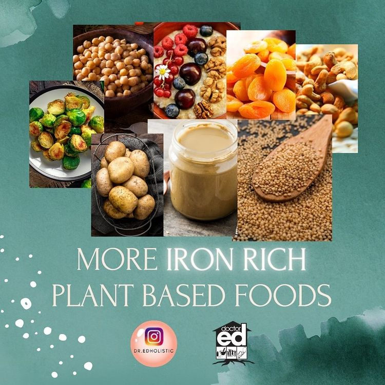 Iron Rich Plant-Based Foods